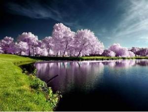 paz de espirito