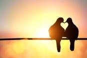 quando-amor-acontece