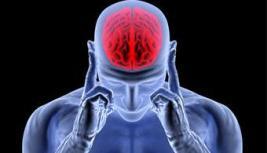 cerebro-capaz-construir-musculos-pensamento